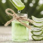 Aloe vera -kasvin sisältämä lehtimehu sopii muun muassa ihon kosteutukseen.