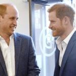 Prinssi Williamilla ja prinssi Harrylla on lämpimät välit keskenään.