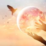 Horoskooppimerkkien henkisyys vaihtelee paljon. Lue tästä, miten sinun horoskooppimerkkisi henkisyys ilmenee.